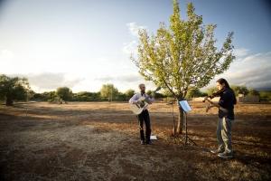 musicians during a farm wedding at eumelia