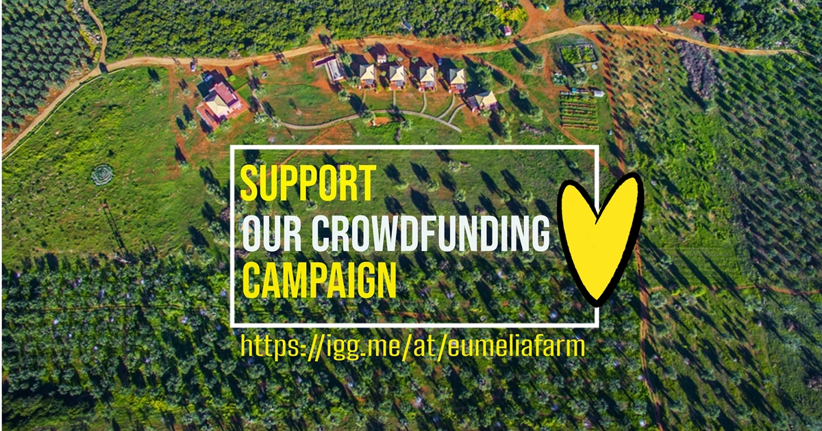 our crowdfunding campaign to go off the grid